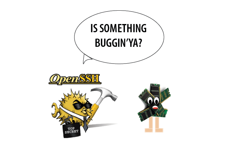 OpenSSH Crypt CPU Consumption |