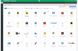 SanerNow Software Deployment